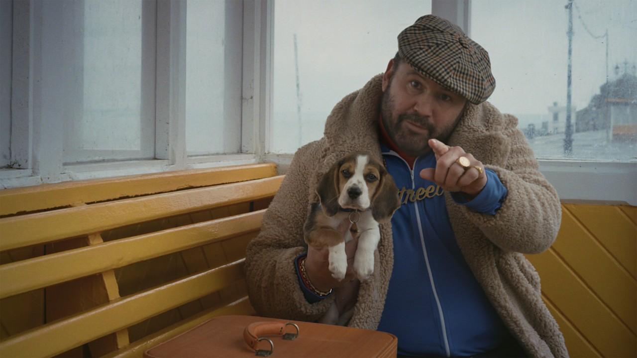 Beagle Life Insurance >> Beagle Street Beagle And Lenny Street By Above Beyond